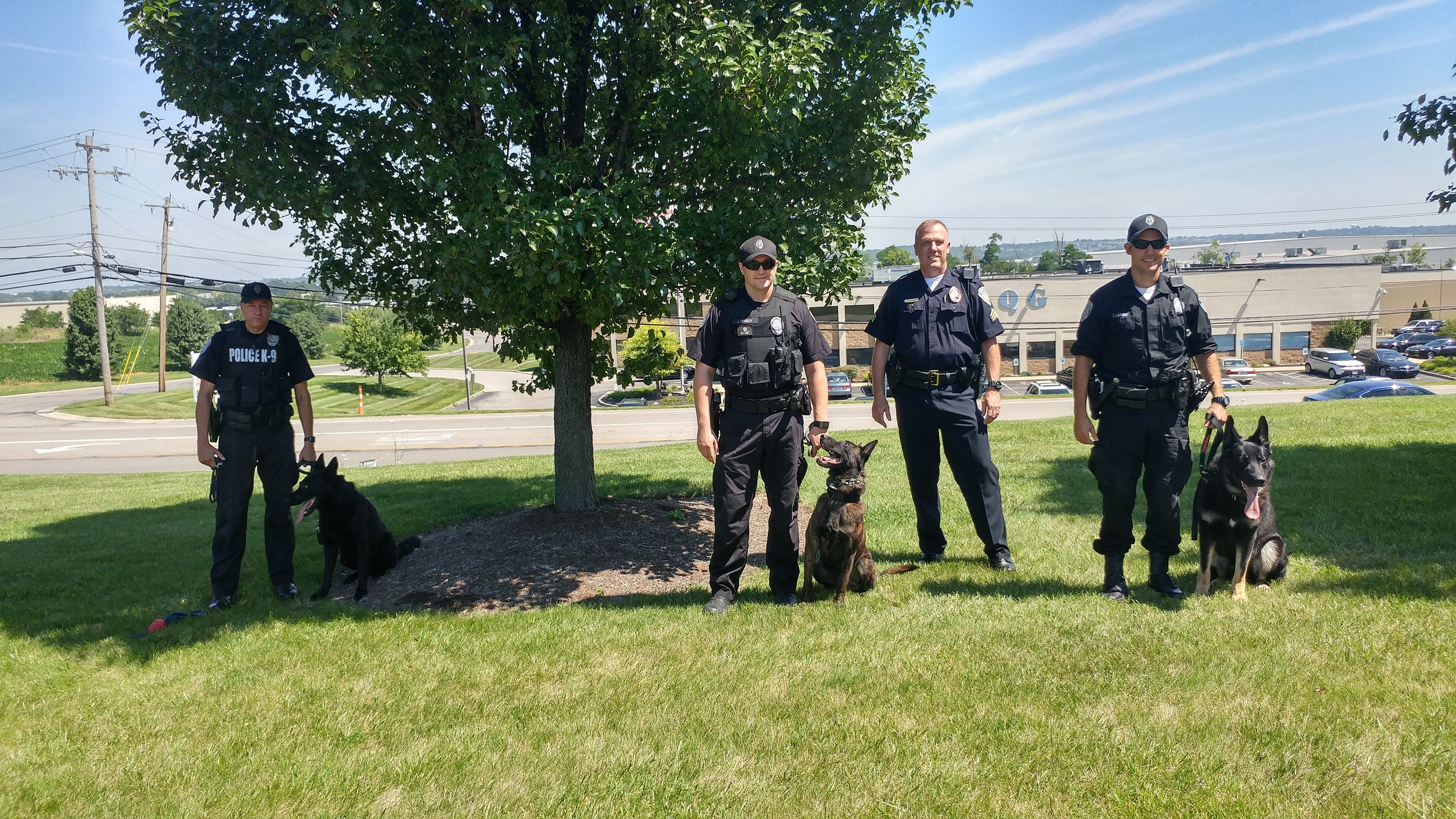 K9 teams with GV July 2017 (1)